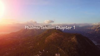 Meditation Scripture Reading – Psalms/Tehillim Chapter 1