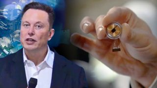 Neuralink: Elon Musk's entire brain chip presentation in 14 minutes