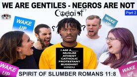 PART 2/3 WE ARE GENTILES – NEGROES ARE NOT WAKE