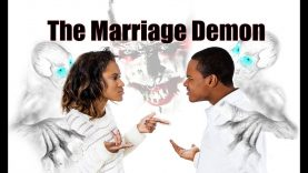 The Marriage Demon, Marriage Series 8