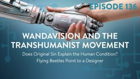 WandaVision and the Transhumanist Movement | 28:19 ep 136
