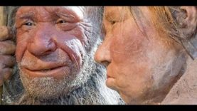 Where Does White Skin Come From? – Scientific & Biblical