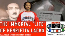 🇺🇸1920 THE IMMORTAL LIFE OF HENRIETTA LACKS: HeLa CELLS #LESTWEFORGET🌺