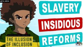 Slavery Insidious Reforms: Mind Control The illusion of Inclusion