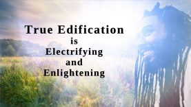 True Edification is Electrifying and Enlightening