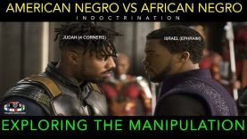 AMERICAN NEGRO VS AFRICAN NEGRO | EXPLORING THE INDOCTRINATION