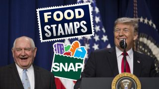 The Trump Admin Is Trying to Kick Millions Off of