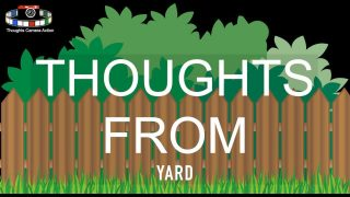 THOUGHTS From YARD