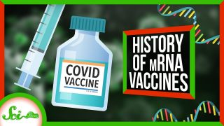 Why It Actually Took 50 Years to Make COVID mRNA