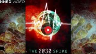 """WHAT IS """"THE 2030 SPIKE?"""""""