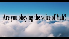 Are you obeying the voice of Yah or someone else