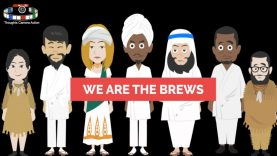 WE ARE THE BREWS RATED (R) FOR REAL